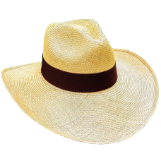 Aguadeno Hat Wide Brim Brown