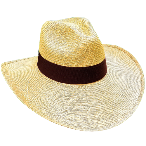 Aguadeno Hat Wide Brim Brown